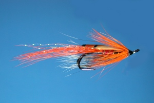 salmon-fly-allys-shrimp-double