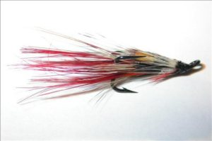 silver-shrimp-salmon-fly
